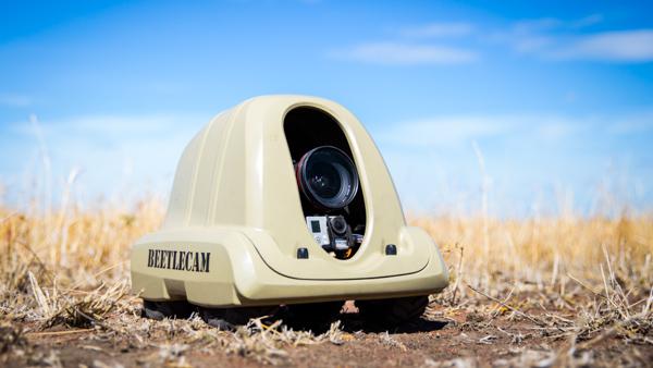 Burrard Lucas Beetlecam - Source