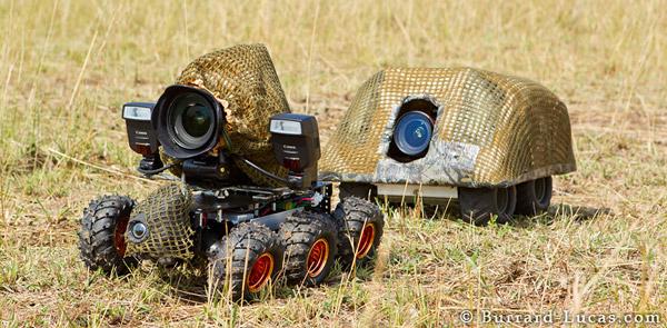 Burrard Lucas Beetlecam, camo setup - Source